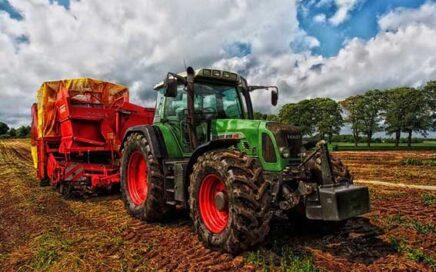 İnek Çiftliğine bakıcı aile - Tekirdağ